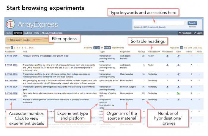 The overview listing experiments archived in ArrayExpress with key information about each experiment