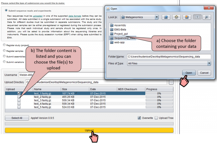 Using the ENA Webin sequence Uploader to upload your sequencing data