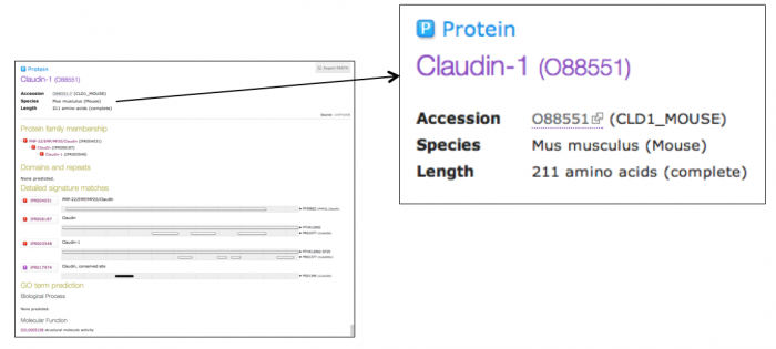 Protein page showing InterPro predictions for UniProtKB protein O88551