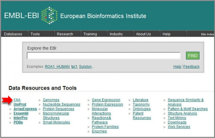 ENA can be accessed directly from the EBI homepage