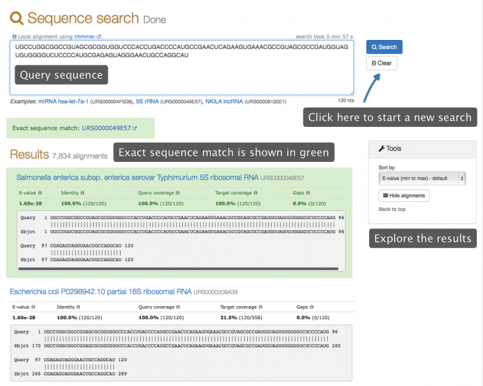 sequence search results example