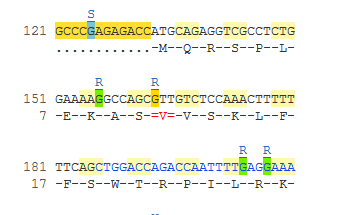Ambiguity code from the transcript cDNA sequence view